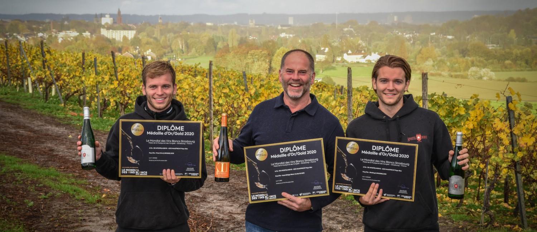 Wijngaard Apostelhoeve wint prestigieuze Franse wijnprijzen!